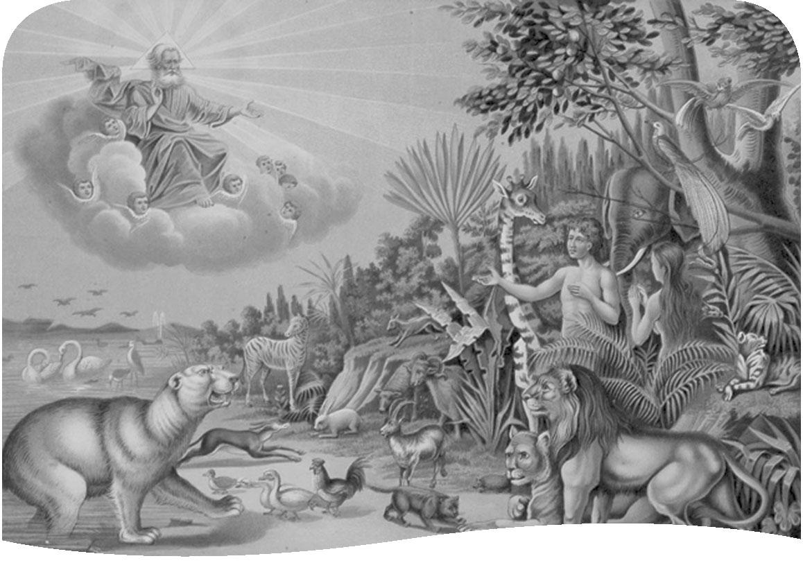 Картинки бог создал человека