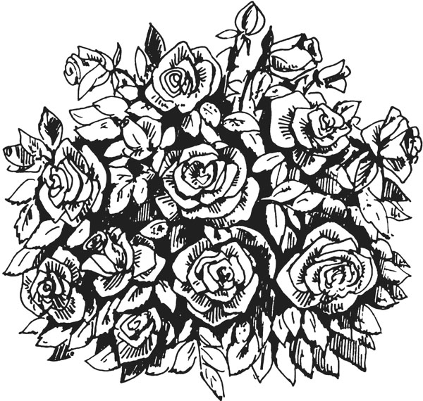 Букет роз графика, цена челябинске