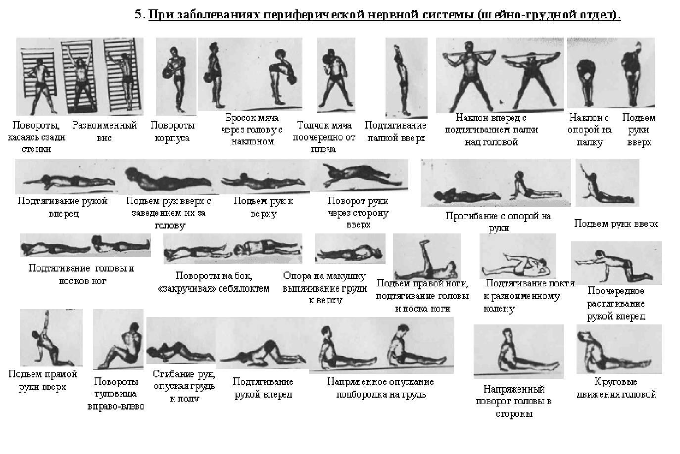 Упражнения на задний пучок дельты в картинках варочные печи