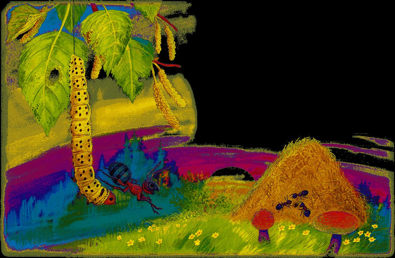 рисунок к рассказу приключения муравьишки предварительной версии