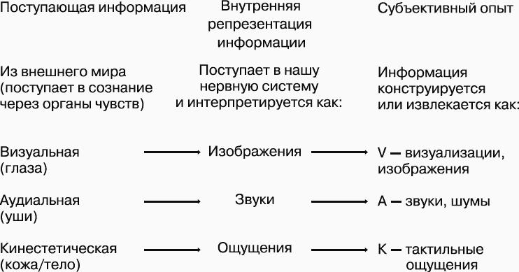 картинки по репрезентативным системам человека не относится по нлп