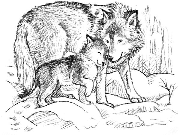нас можете раскраска волчонок и мама худжанд это