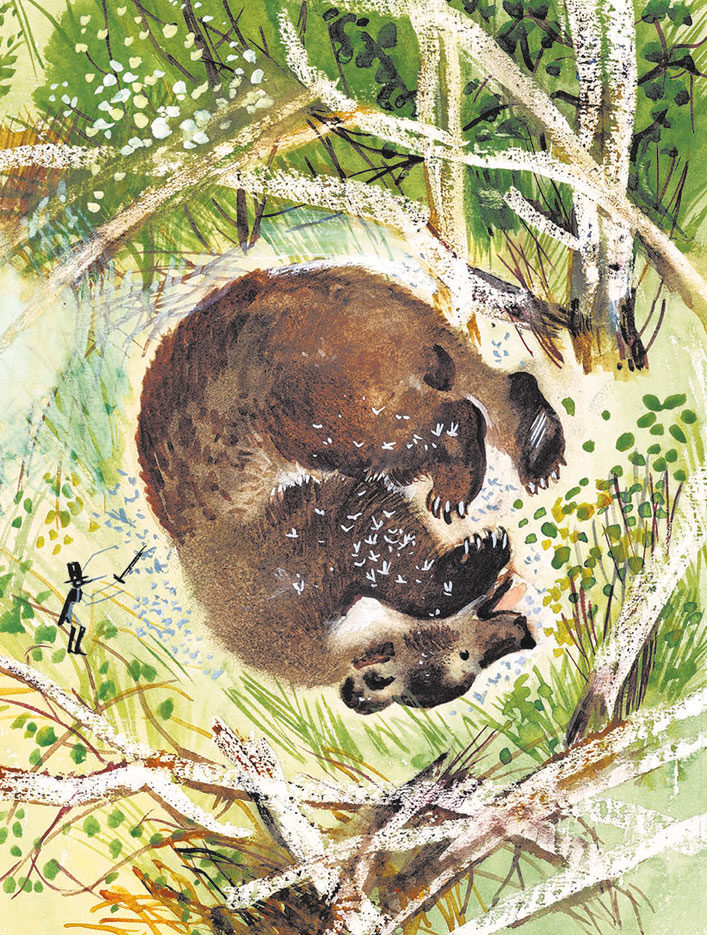 Картинки медведей по бианки