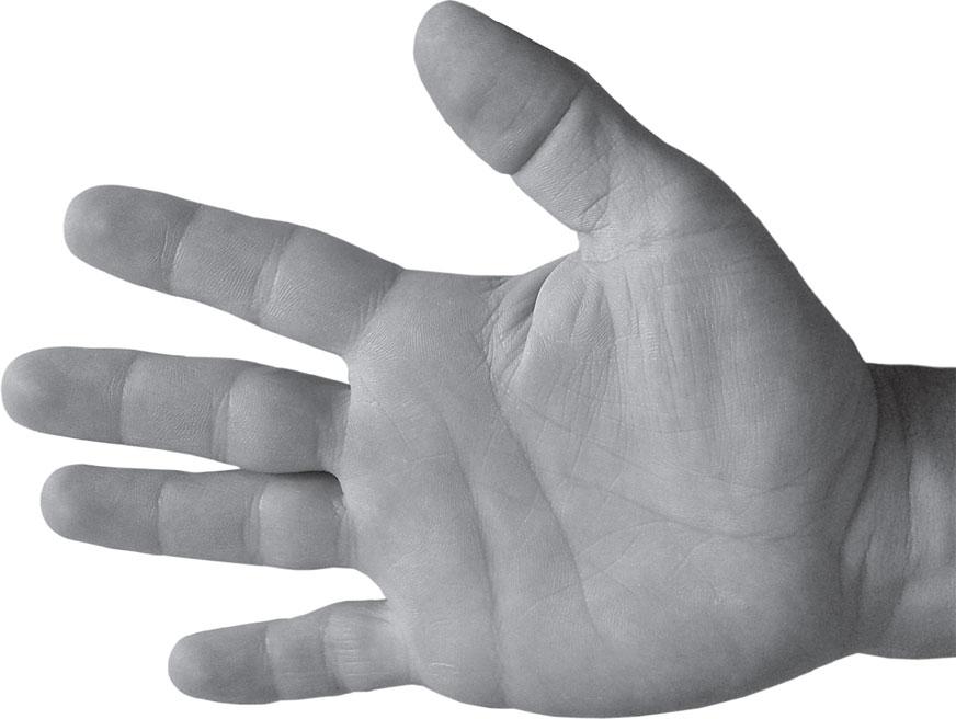 первые фотометры фото лопатообразной руки покажет вам насколько