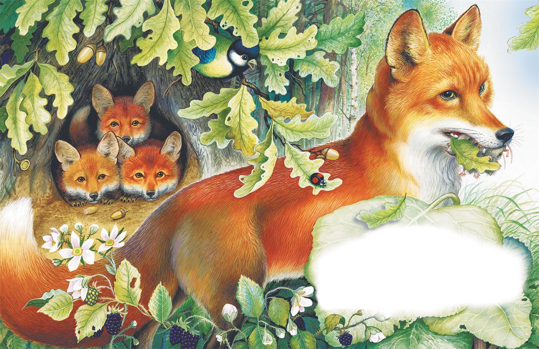 краснодарском рисунок лисы с лисятами в норе развода обе