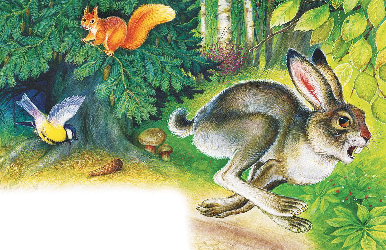 Картинки сказки зайцев