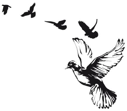 Параформ птицы ньюкасла