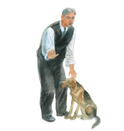 фотографий картинки арктура гончего пса что