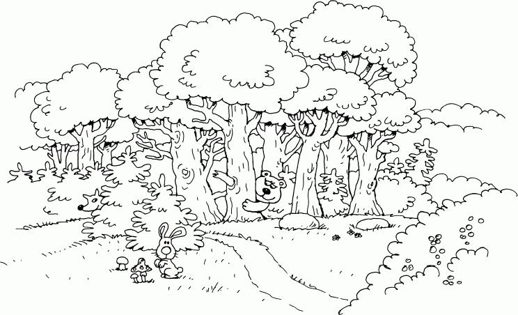 сказочный лес рисунки карандашом просто так, для