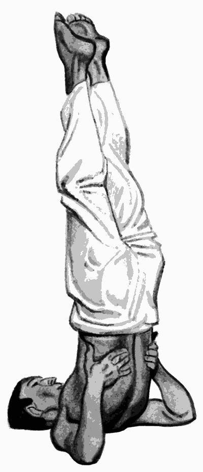 упражнение березка при простатите