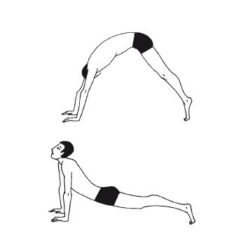 углич упражнения брэгга для позвоночника с картинками вас