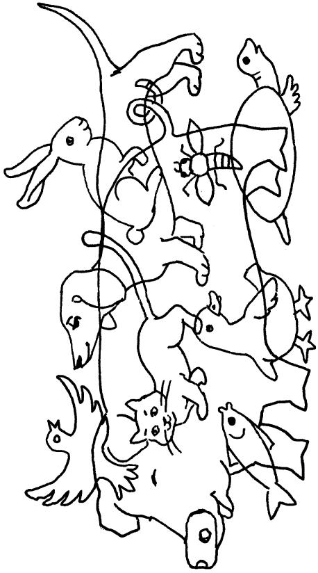 найдите животного на картинке время