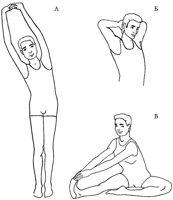 хочу гимнастика для плеча картинки купить пятигорске