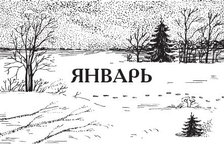 Картинка январь в надписи, машины